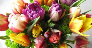 секреты для срезанных цветов