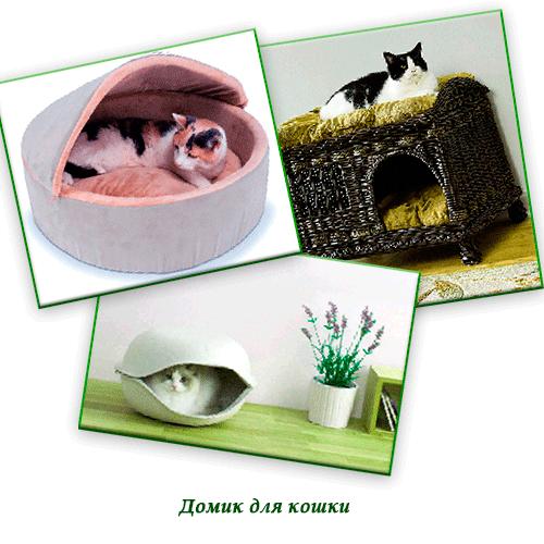 Домик для кошки своими руками с инструкцией фото 582