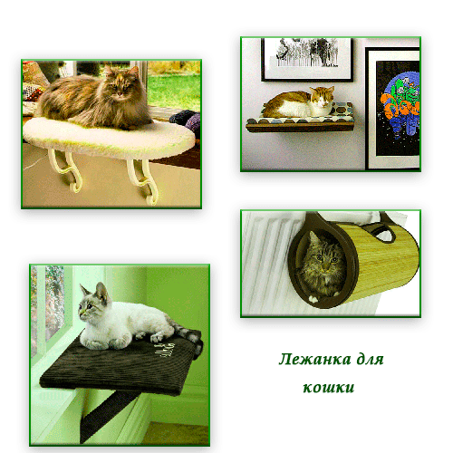 Лежанка для кошки своими руками выкройка мастер