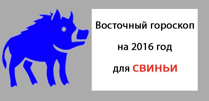 восточный гороскоп на 2016 год для свиньи