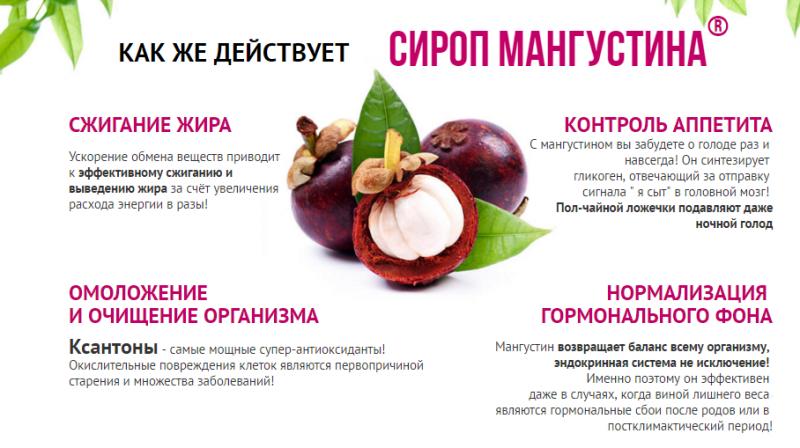 Картинки по запросу mangosteen сироп