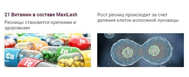 sostav-maxilash