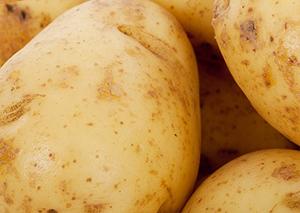 фолиевая кислота в картофеле