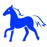 восточный гороскоп на 2016 год для лошади