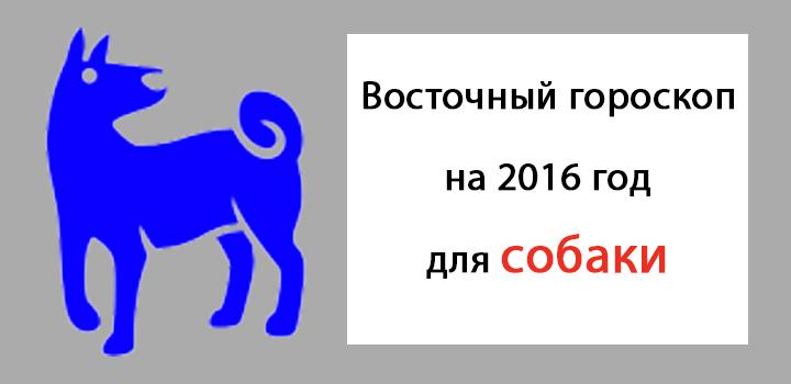 восточный гороскоп на 2016 год для собаки