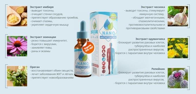 Sostav-antitoxin-nano-sostav